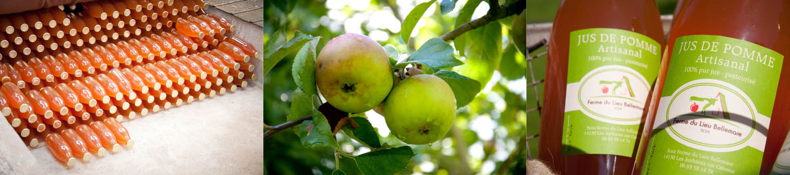 jus de pomme artisanal Ferme Lieu Bellemare Normandie