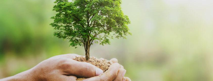 reconversion agriculture bio